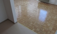 Brušenje in lakiranje parketa,polaganje toplega poda,pleskanje...